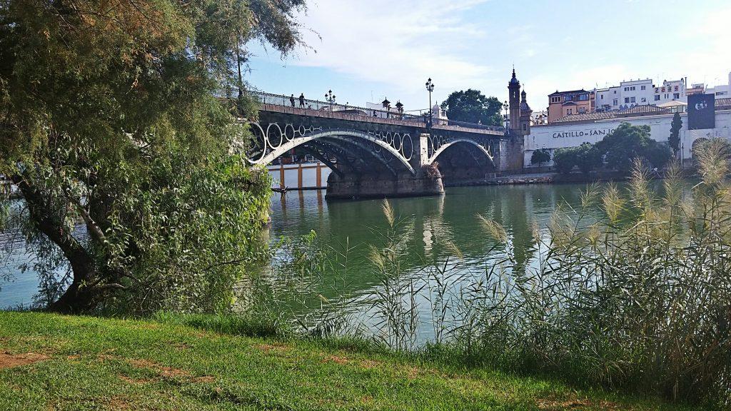 triana puente y aparte