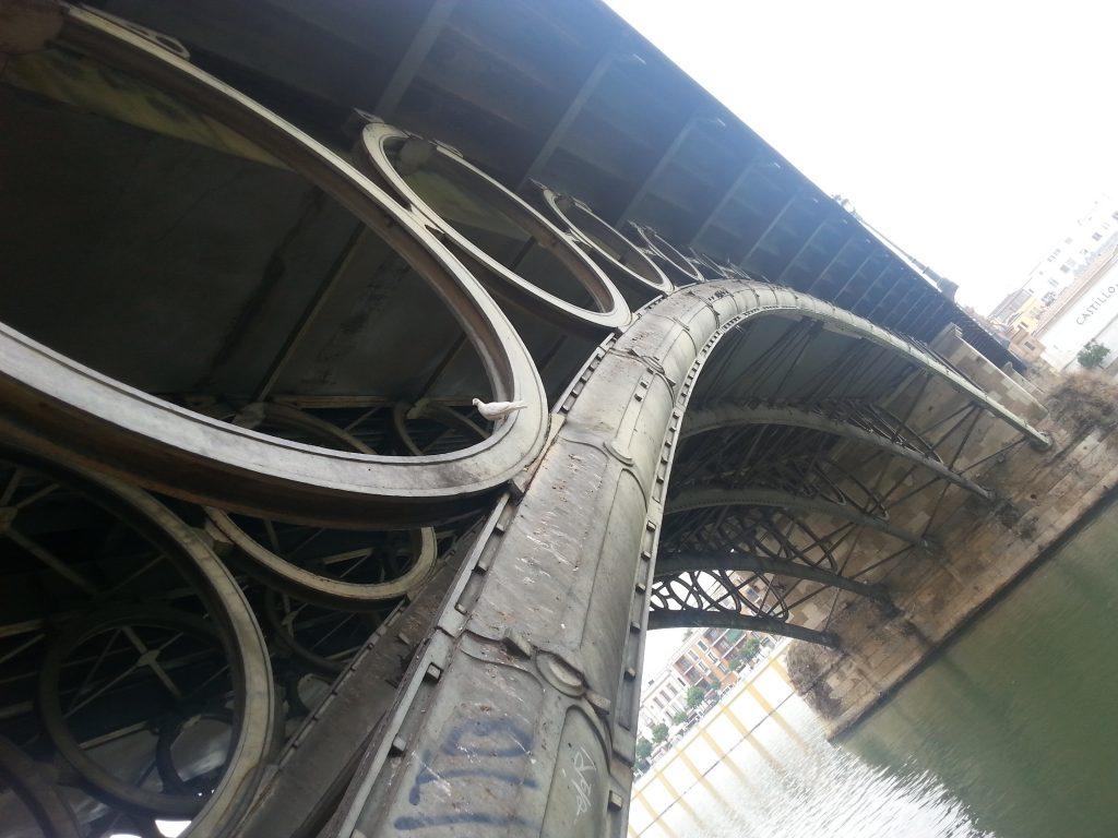 las costillas del puente de triana