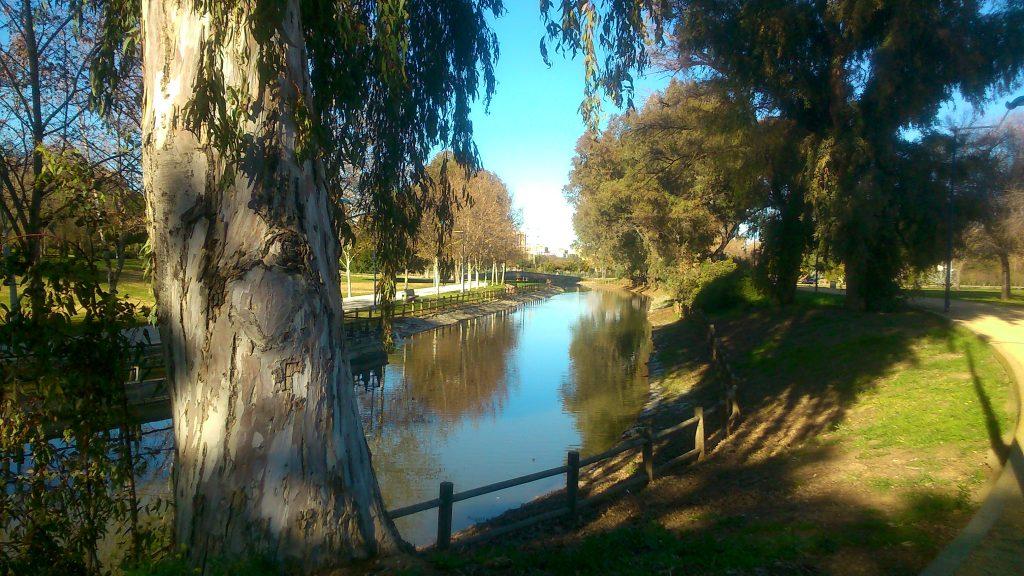 tarde en el parque miraflores