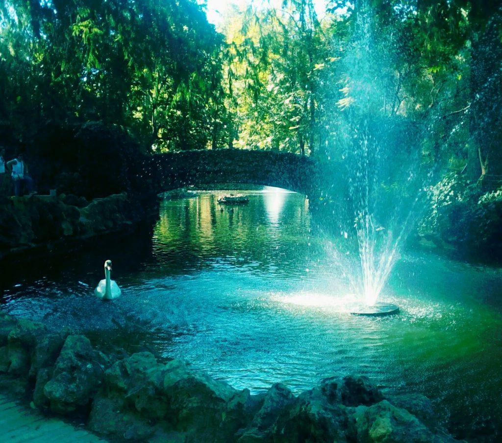 oasis en el parque de maria luisa