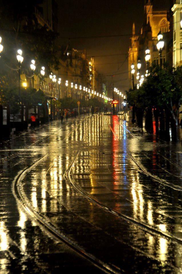luces mojadas